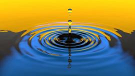 审核制度一直无解,员工扫楼又引争议,该拿什么拯救水滴筹?