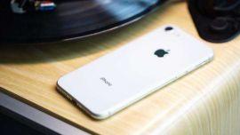 新iPhoneSE单平台销量过10万!没买的别着急,苹果还有plus版本