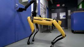 机器狗入职福特工程师,你的岗位正在被取代吗?